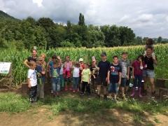 Ferienprogramm-Maisfeld2017-15