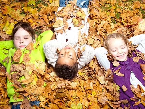 Kinder liegen im Laub