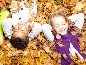 Kinder erkunden den Wald